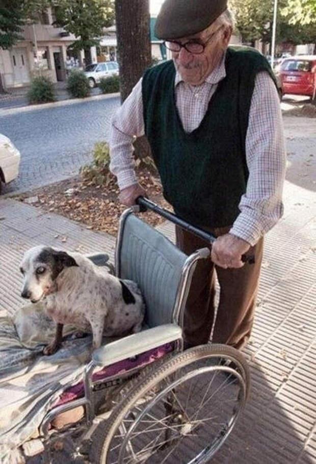 kindness01 Без лишних слов: пост о тех, кто делает добро