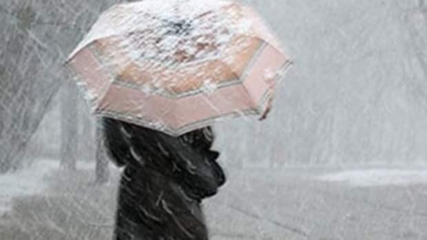 Жителей Алтайского края предупредили о снегопаде и сильном ветре