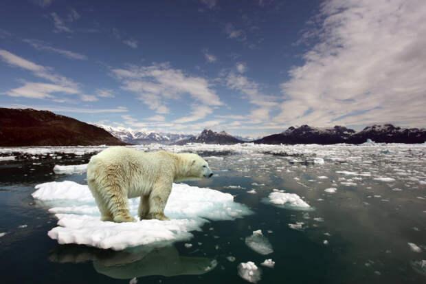 Глобальное потепление в России идет в три раза быстрее, чем во всем мире