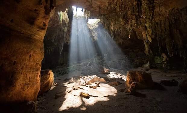 В пещерах Германии нашли останки первых одомашненных волков
