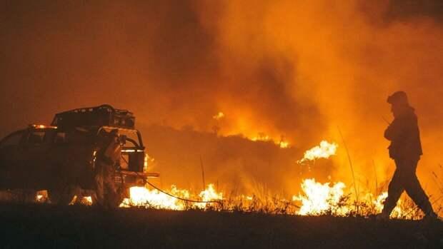 Пожар площадью 53 гектара разгорелся в югорских лесах