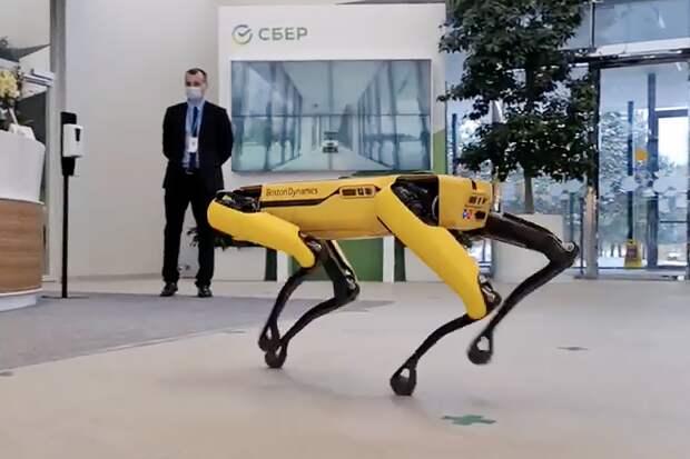 Первый робот Boston Dynamics появился в России