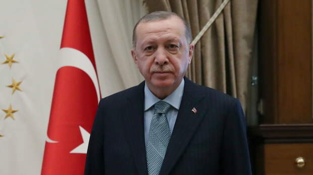 Эрдоган и генсек НАТО в разговоре затронули тему Украины