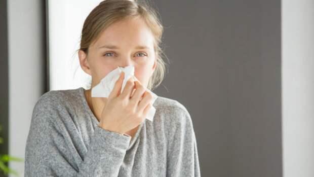 Россиянам рассказали, от каких продуктов лучше отказаться при аллергии на пыльцу