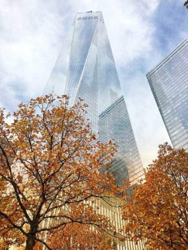 Победитель в категории «города и природа»: Осень в большом яблоке. Автор: Yonca Ables, США.