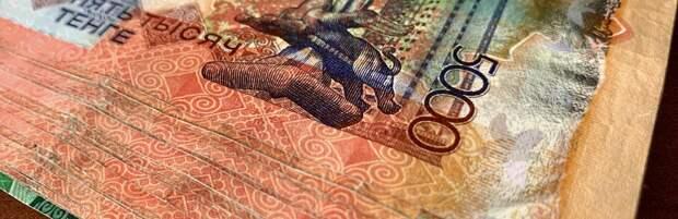 Почти 60 миллионов тенге украла домработница у жительницы Атырау
