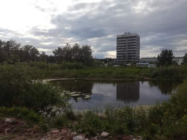 Городские власти рассмотрят варианты, как облагородить пруд на улице Автозаводской