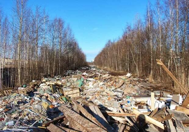 РЖД и жители Питера страдают из-за «чёрных мусорщиков».  В Санкт-Петербурге на территории депо организовали незаконную свалку
