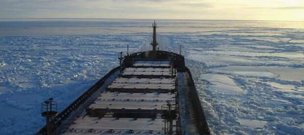 Крупнейшая судоходная компания Арктики стала банкротом
