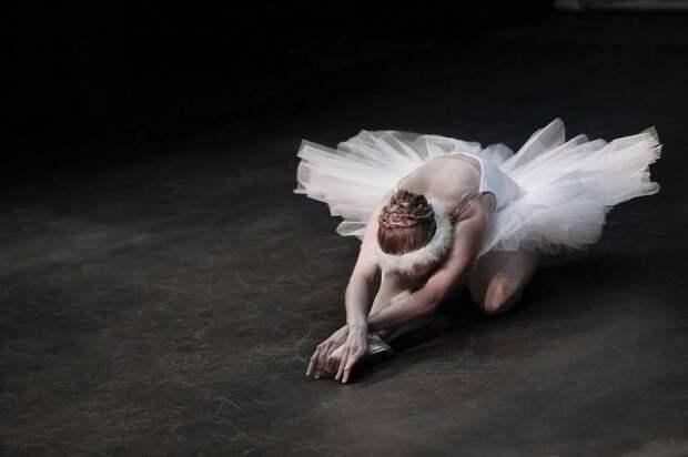В Новосибирском театре оперы и балета пройдет праздничный гала-концерт