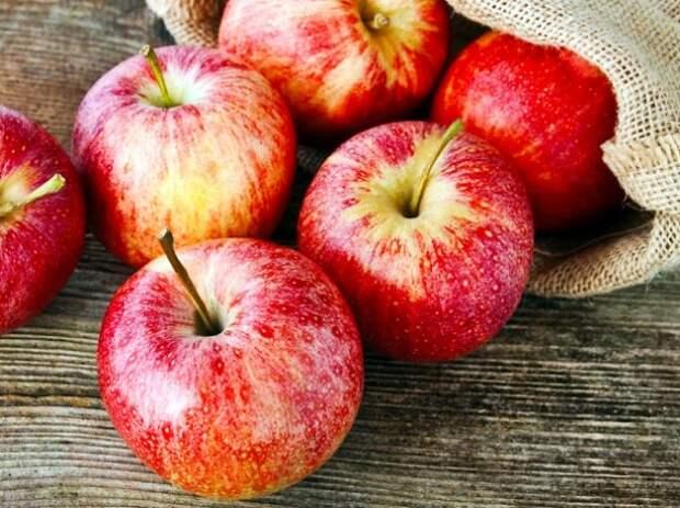 Картинки по запросу яблоки