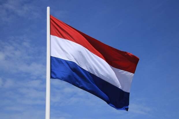 ЦИК России дал оценку подготовке первых многодневных выборов в Нидерландах