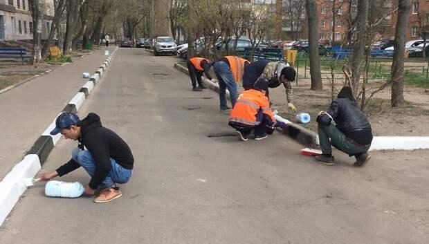 В Климовске УК покрасила бордюрный камень во дворах