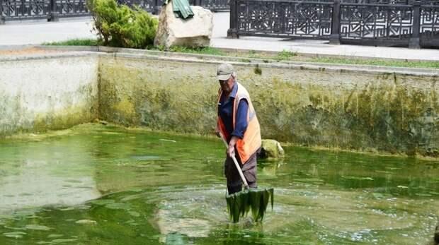 Пруды в Екатерининском саду Симферополя очистят от мусора