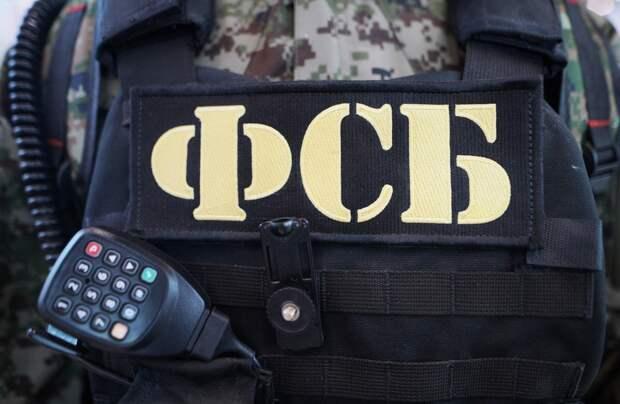 Незаконная вырубка деревьев: Глава Крыма прокомментировал задержания чиновников в Ялте