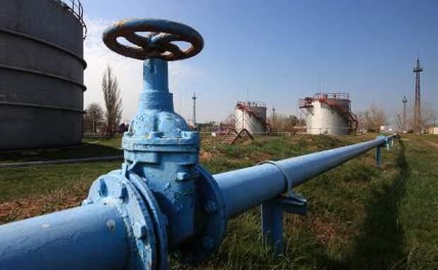 НАТО даст жару, то есть газу - держи, Украина, трубу шире!