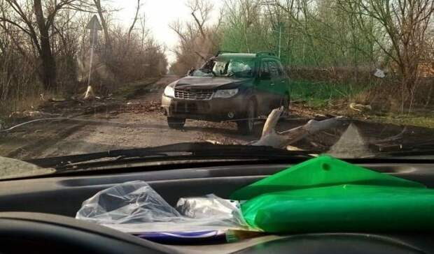 Один человек пострадал при падении дерева намашину вРостовской области
