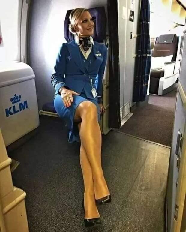 Ножки стюардесс. Подборка chert-poberi-styuardessy-chert-poberi-styuardessy-57310504012021-14 картинка chert-poberi-styuardessy-57310504012021-14