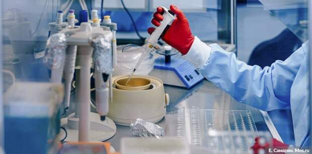Турция заявила о рекордном числе заразившихся COVID-19 за сутки. Фото: Е.Самарин, mos.ru