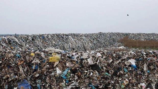 """""""Остров"""" мусорного невезения Осипова"""