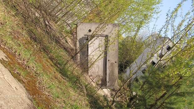 chnpp05 Оживающий Чернобыль