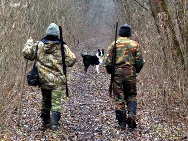 На Среднем Урале погибло пятеро охотников с начала сезона охоты истории, происшествия, факты