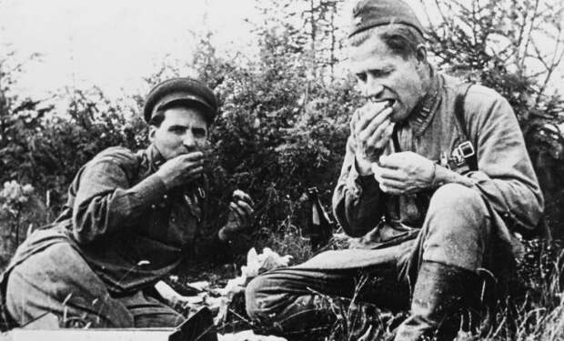 Полевая кухня Вермахта и СССР: кого кормили лучше