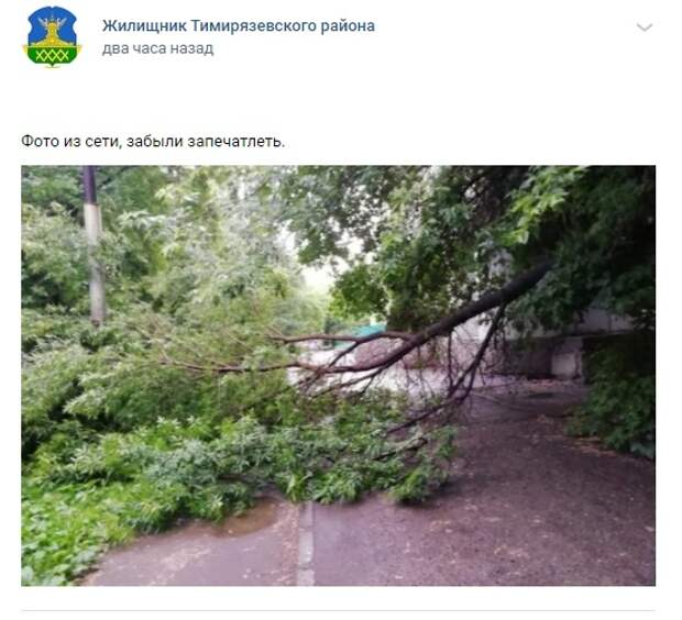 На Астрадамской улице оперативно устранили последствия штормового ветра