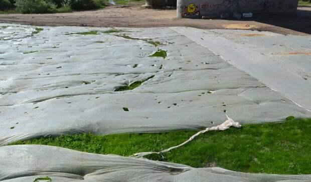 Итак сойдёт! Нанабережной Урала изуродовали газон, забыв снять снего плёнку