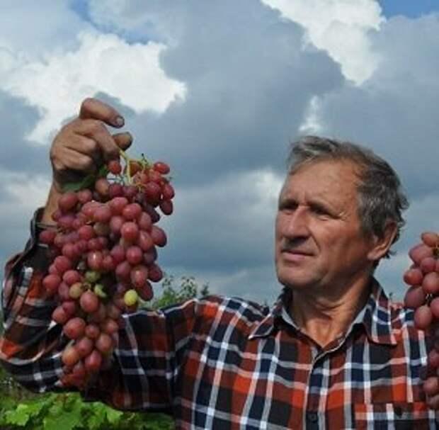 Садовод Петр Семишов