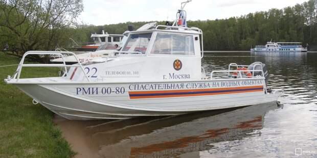 Водные спасатели ликвидировали возгорание дерева в Строгинском затоне