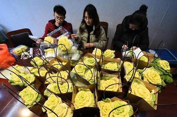 В Китае вывели новый сорт роз - теперь они съедобны!