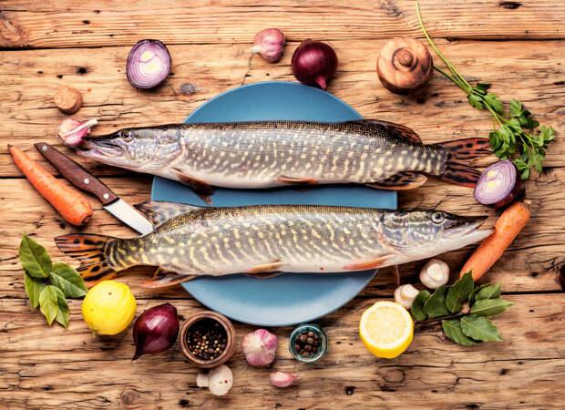 Куда отправиться, чтобы научиться готовить самые вкусные блюда