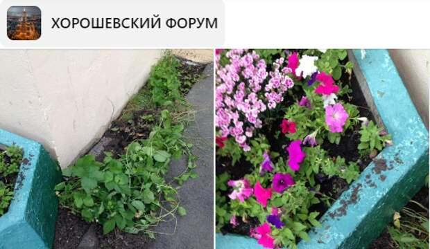 Жители улицы Полины Осипенко пожаловались на «закладчиков»