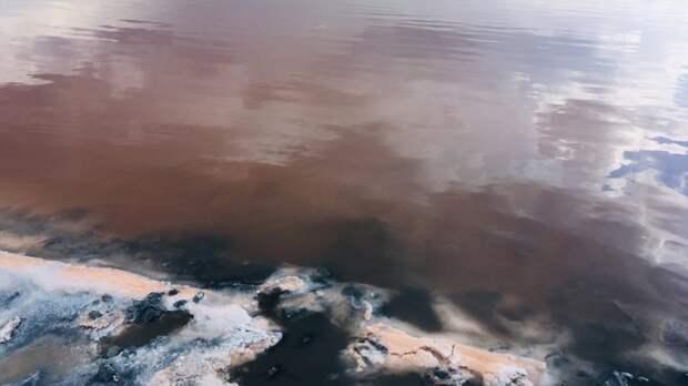 Климатолог Крыма рассказал об уникальном воздействии сакских грязей на здоровье