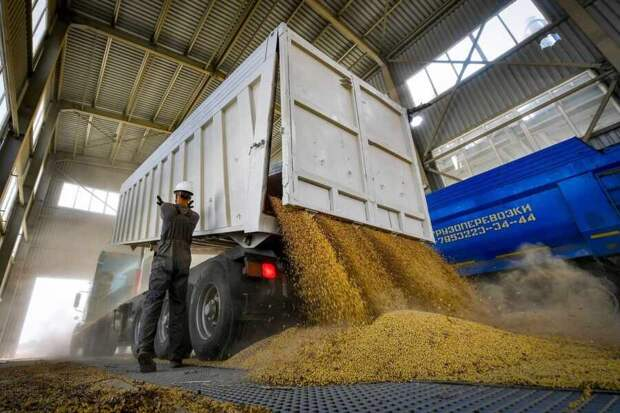 Доколе «страна-агрессор» будет заваливать Прибалтику своим зерном?
