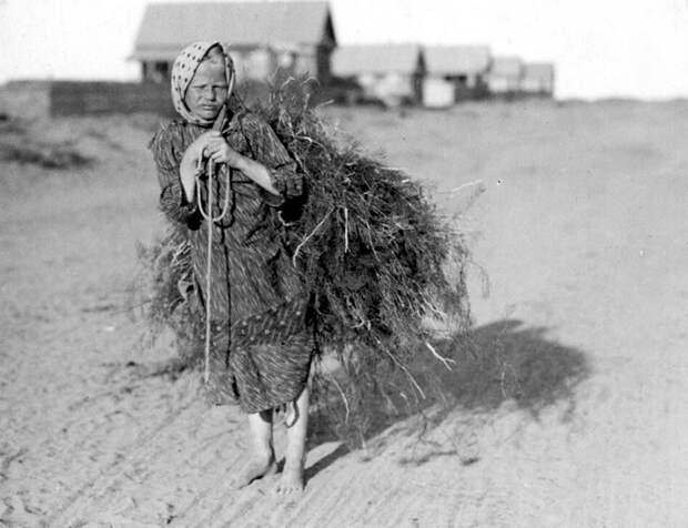 Привoлжские аcтраханcкие степи, 1912-1913 гг․. | Фото: Захарий Виноградов