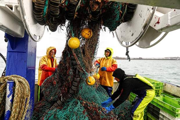 Франция и Великобритания оказались на грани конфликта из-за рыболовства