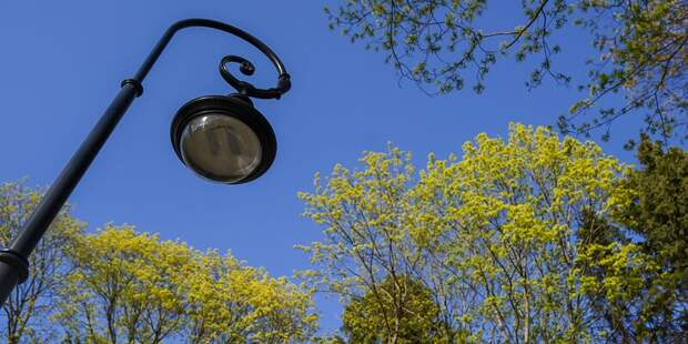 Более 80 новых фонарей установят в Куркине по просьбам жителей