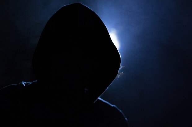 Нерадивую студентку из Лефортова обманула кибер-мошенница