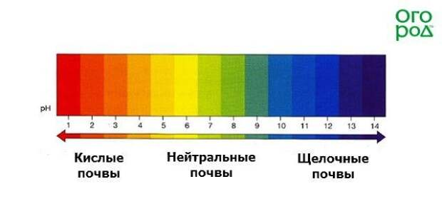 Шкала кислотности почв