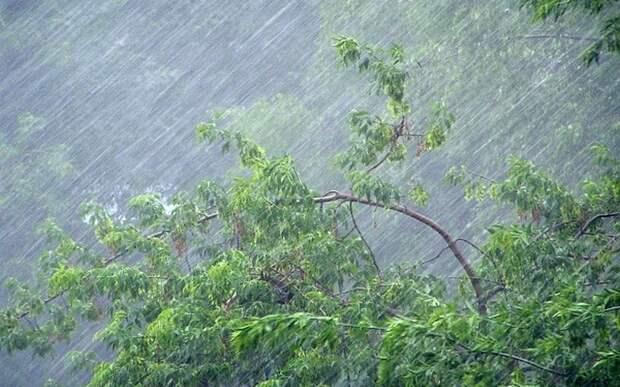 Рязанцев предупредили о ливнях и усиливающемся ветре