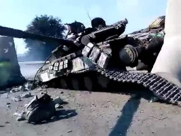 Война и мир: еж-пацифист разломил танк карателей пополам