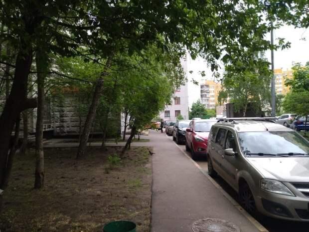 «Жилищник» оперативно убрал упавшее дерево на улице Авиаконструктора Миля