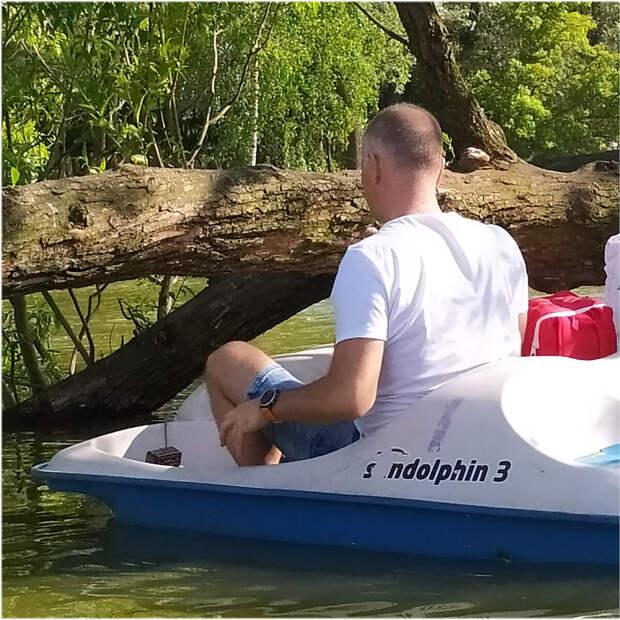 """Фото Ондатры. Под кодовым названием """"приплыли"""". Здравствуй, дерево!"""