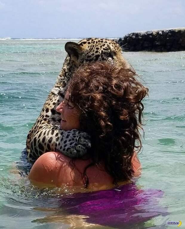 Купание с ягуарами