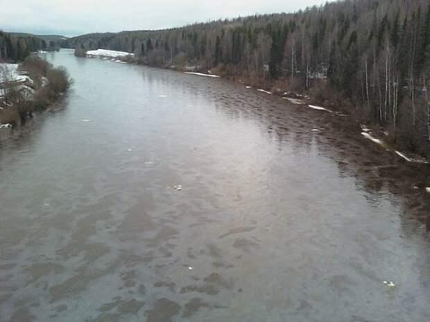 В Коми после разлива нефти в реку из трубопровода структуры «Лукойла» введен режим ЧС