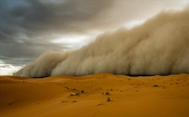 Внутри песчаной бури. Откуда приходит хабуб