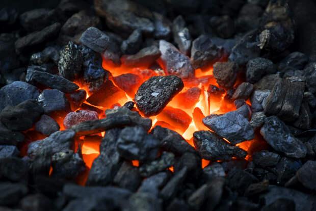«Зеленое лобби» закончилось: Европа наращивает закупки российского угля