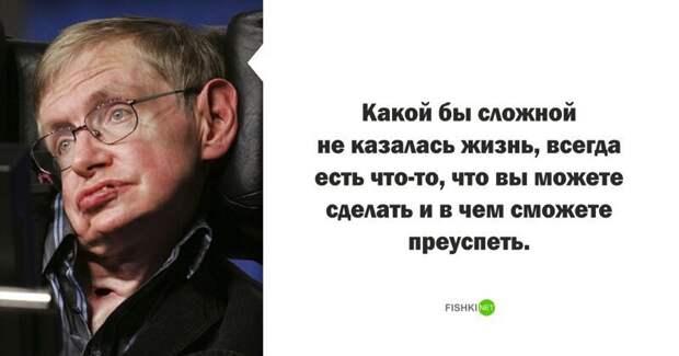 Стивен Хокинг высказывания, звезды, знаменитости, известные люди, интересно, мудрость, подборка, цитаты
